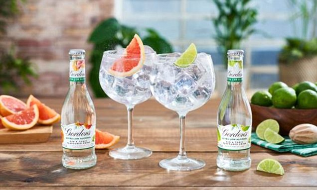 Gordon's Launches An Ultra-low Alcohol Gin And Tonic Drink photo