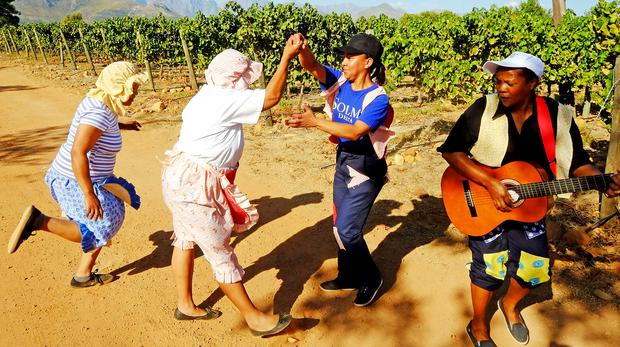 Department To Review Farms' Viability After Solms-delta Saga photo
