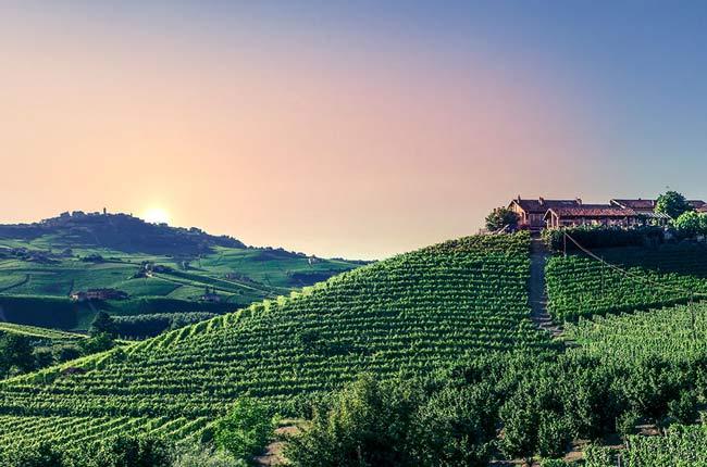 Top Barolo Riserva 2012 Wines photo