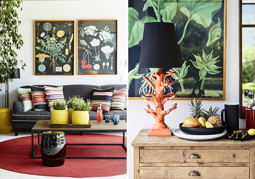 In Living Colour: A Family Home In Bishopscourt, Cape Town photo