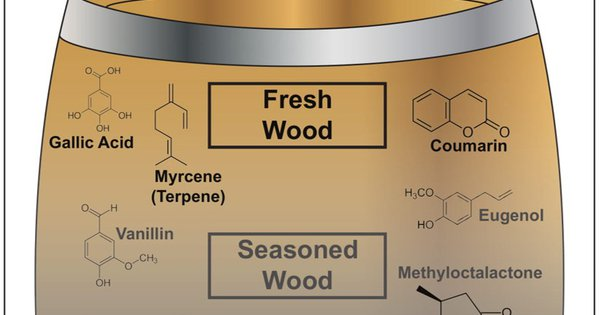 on The Influence Of Wood On Flavor photo