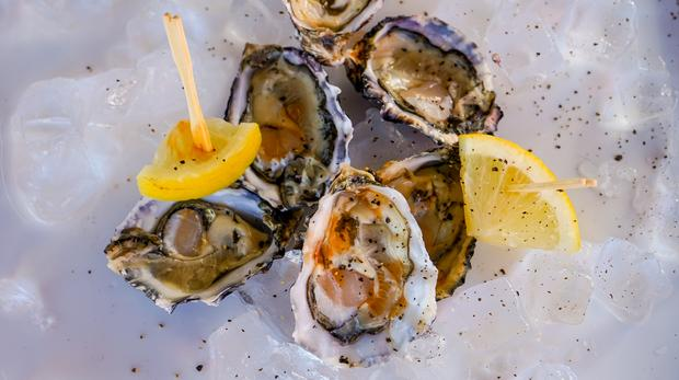 5 Things To Taste At The Pick N Pay Knysna Oyster Festival photo