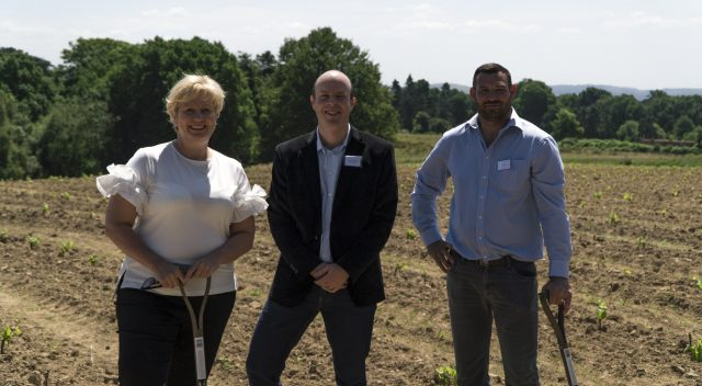 First Pinotage Vineyard Planted In The Uk photo