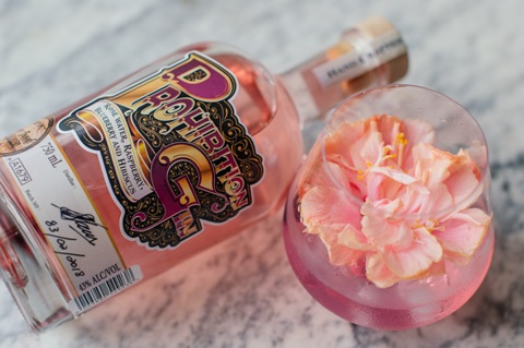 Prohibition Craft Gin LR 9 Silver Creek Distillery Launches Exciting New Prohibition Craft Gin Duo