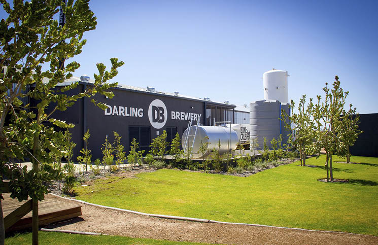Darling Brew photo