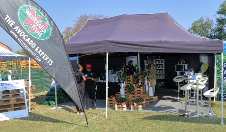 South Africa: The First Annual Tzaneen Avofest photo