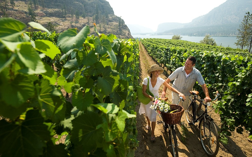 Why British Columbia Is The New Destination For Wine Lovers photo