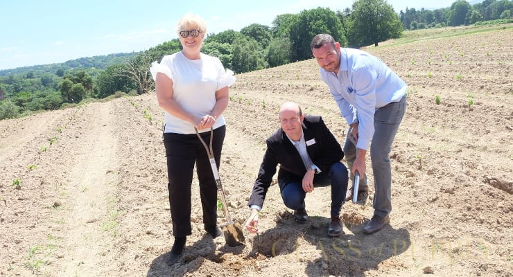 Entrepreneur Penny Streeter To Introduce First English Sparkling Wine Pinotage Vineyard photo