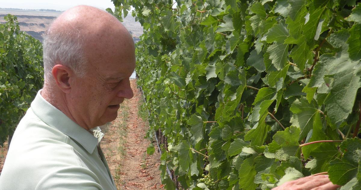 Robert Mondavi Made An Impact On Washington Wine Through His Friendship With Allen Shoup photo