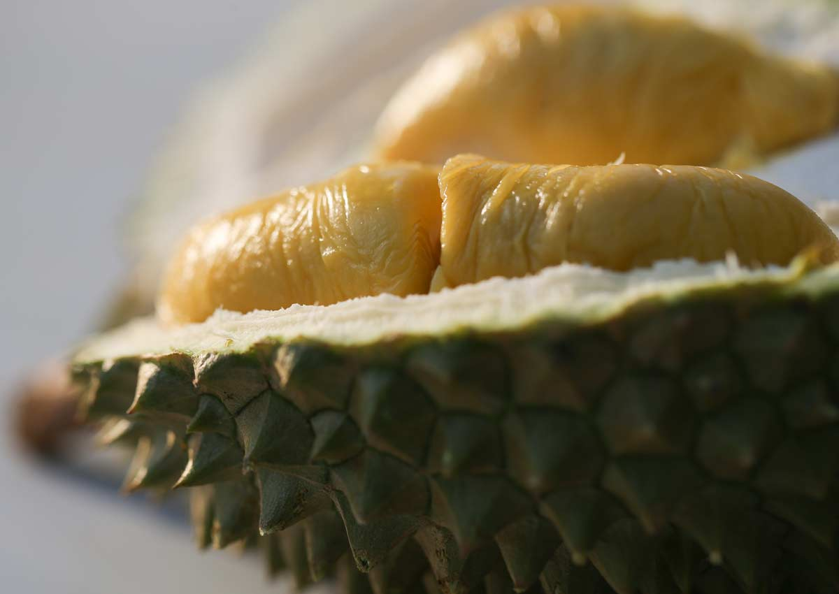 Where To Go For Durian Buffets In Singapore, photo