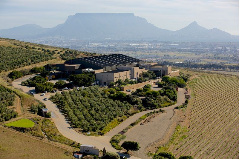 The Best Of Durbanville Hills Winery photo