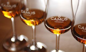 Distell And Camus Cognac Enter China Distribution Deal photo