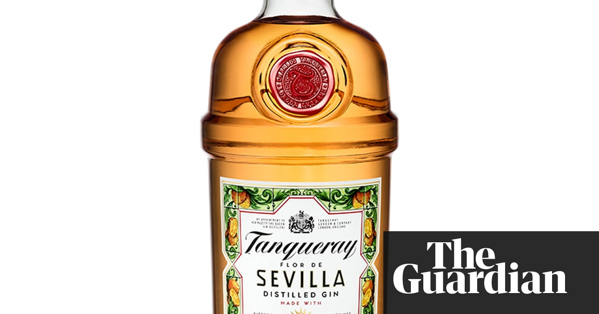 Gin Craze Boosts Sales By 22% Across Europe For Diageo photo