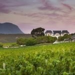 Bouchard Finlayson's Latest Vintages Get The Nod From James Suckling photo