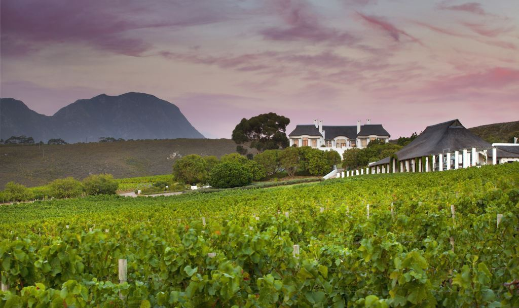 Bouchard Finlayson: A Slice Of Heaven And Earth photo