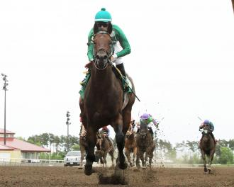 Mr. Jagermeister, Firstmate Strong Favorites In Statebred Stakes photo