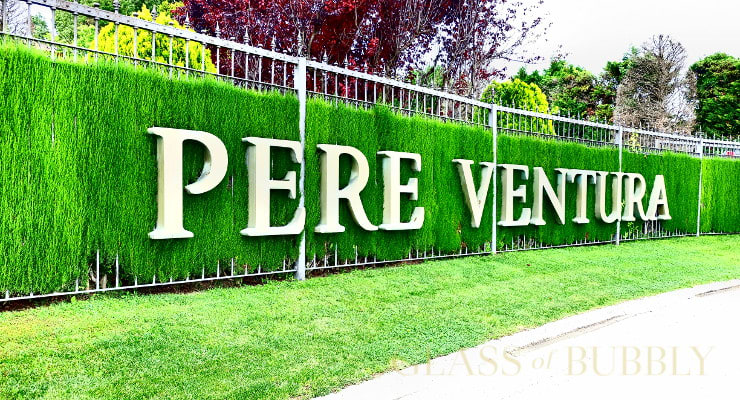 A Visit To Cava Pere Ventura photo