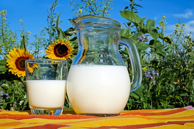 South Africa Uht Milk Market To Register Significant Growth Of Us$ 1185.3 Million In 2019 – Management Journal photo