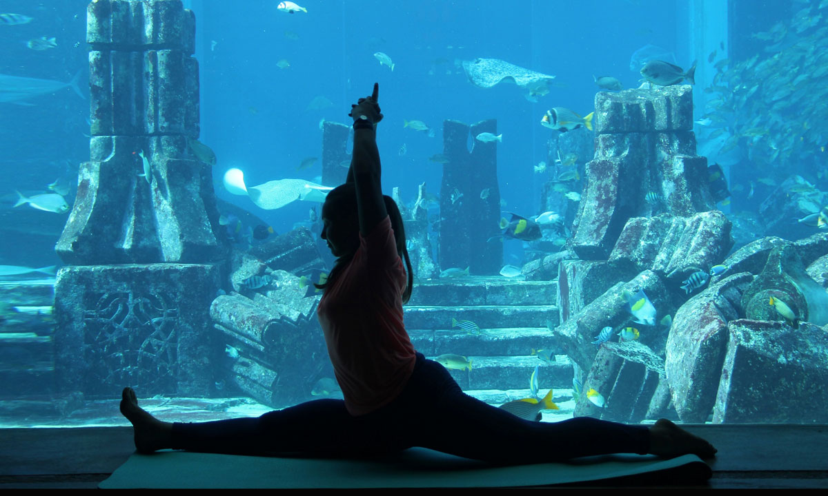 Holidaying Next To The Ocean Floor In An Underwater Hotel photo