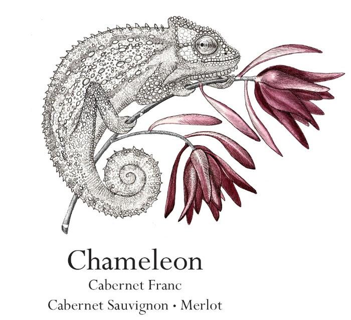 cabfranc Chameleon Wine Range By Jordan Gets A New Look