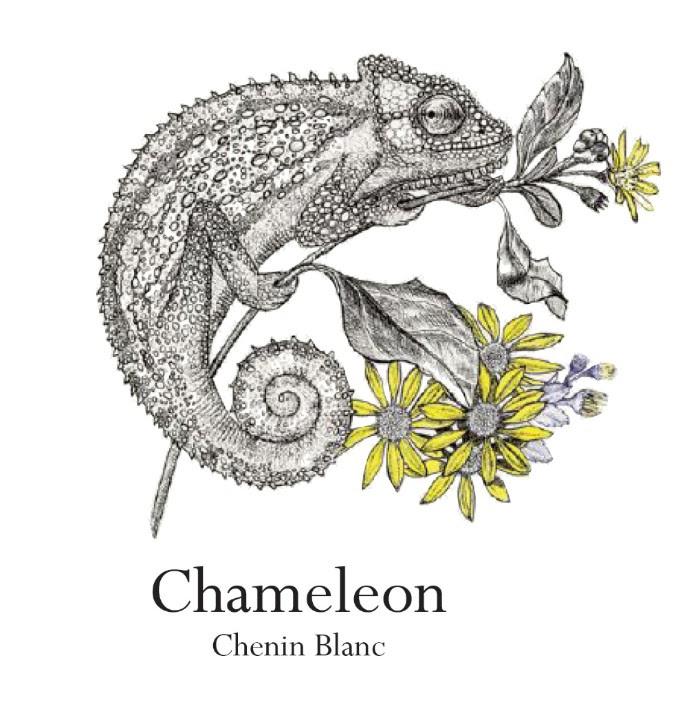 chenin Chameleon Wine Range By Jordan Gets A New Look