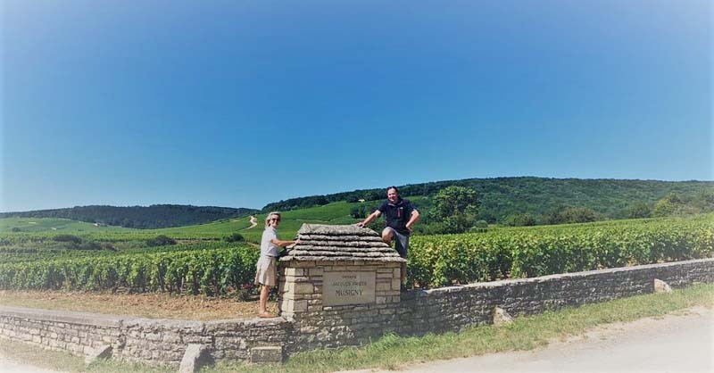 Creation at Home in Switzerland and Burgundy photo