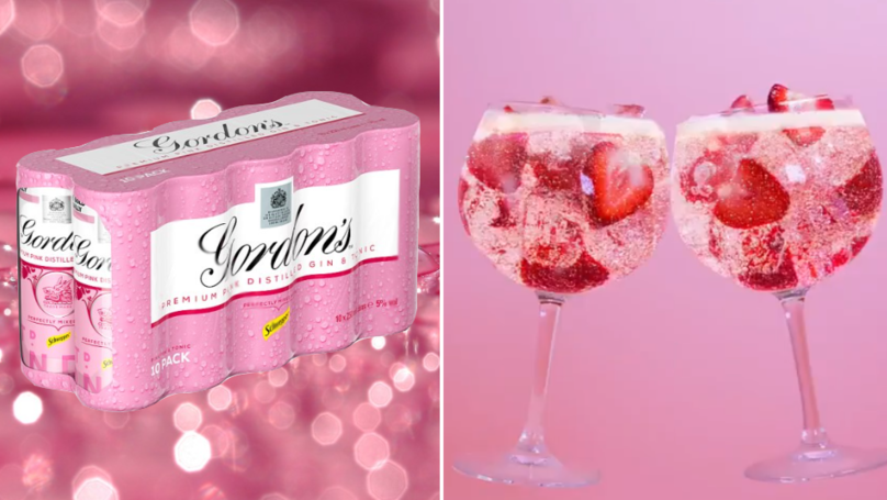 You Can Get A Crate Of Gordon's Pink Gin And Tonic Cans For A Tenner From Tesco photo
