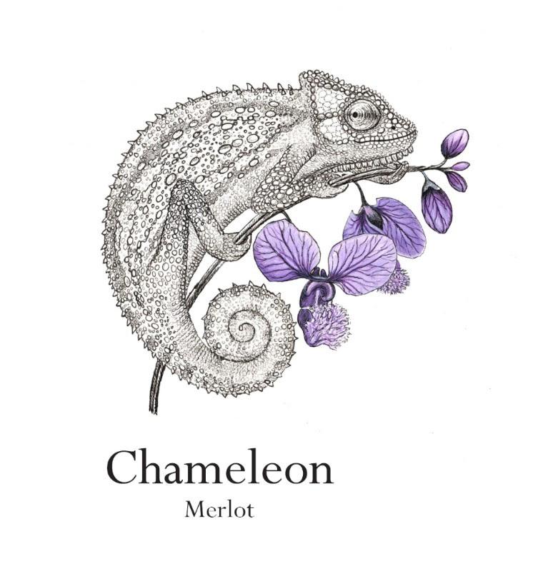 merlot Chameleon Wine Range By Jordan Gets A New Look