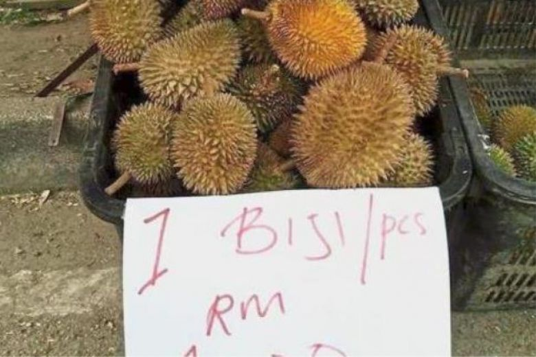 Durian Prices Drop To Lowest At Rm1 Per Unit In Malaysia, photo