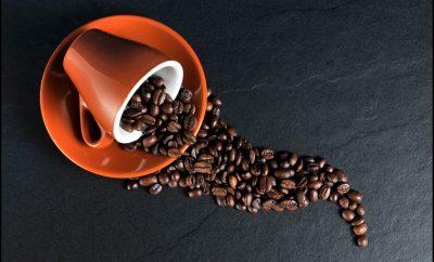 The 7 Best Coffee Roasters In San Diego photo