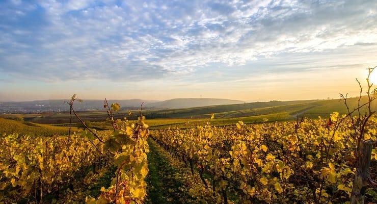 5 Best Sparkling Wine Regions In Europe photo