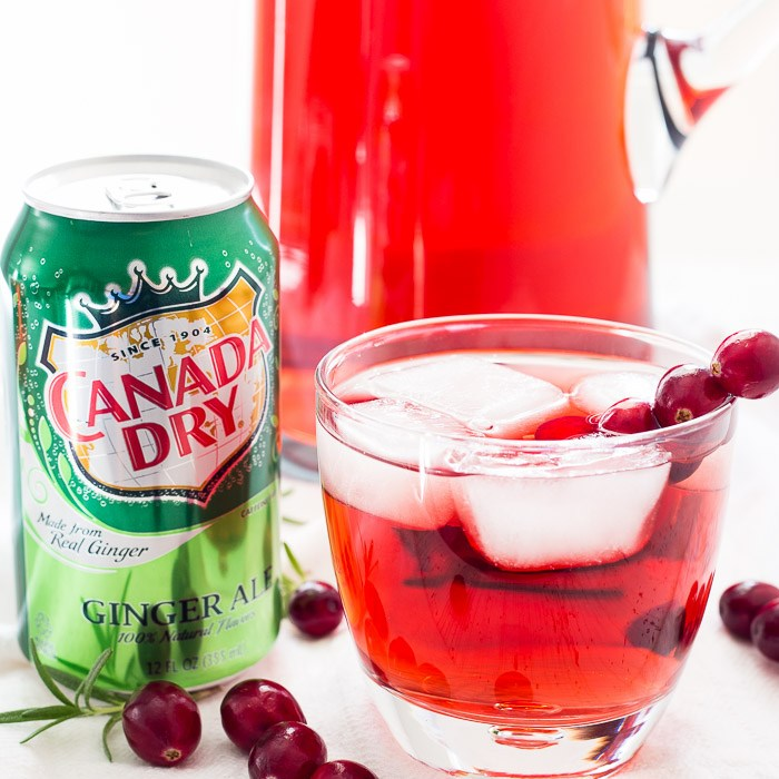 Absolutely Cranberry Smash Cocktail photo