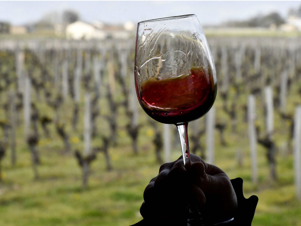 Winemakers Revolt Against Health Tags On Bottles, Say Move Labels Wine As A 'criminal Product' photo