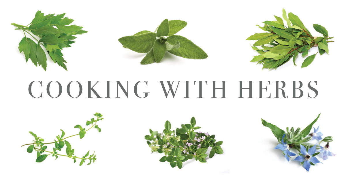 An A-z Guide To Our Favourite Kitchen Herbs photo