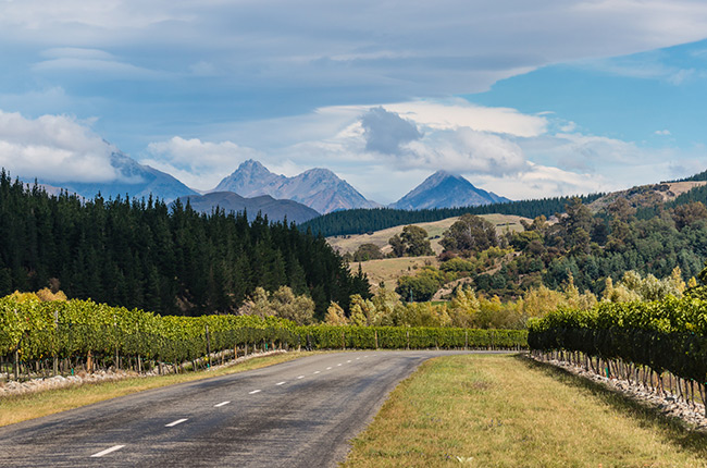 Travel: The Ultimate New Zealand Wine Road Trip photo