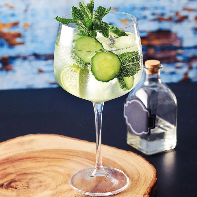 Michelangelo Experiences South Africa's Gin Renaissance photo