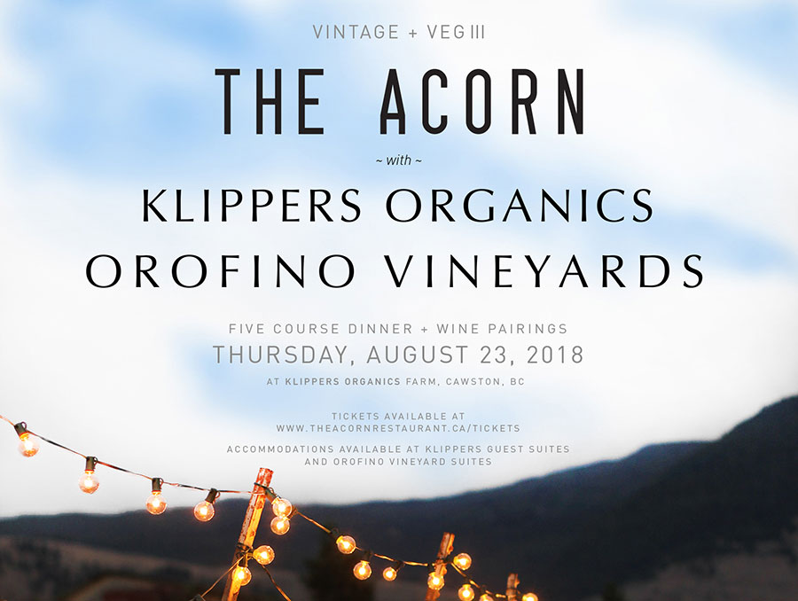 The Acorn To Pair With Orofino For Outdoor Long Table Feast At Klippers Organics Farm photo