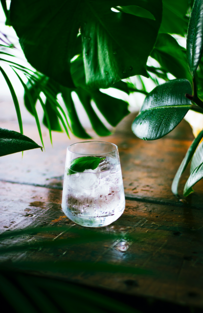 In Focus: The Latest Trends In Gin photo