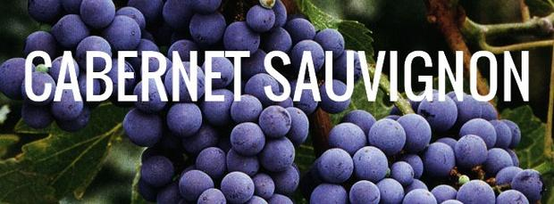 "Enjoy A Glass Of ""cab Sav"" On International Cabernet Sauvignon Day photo"
