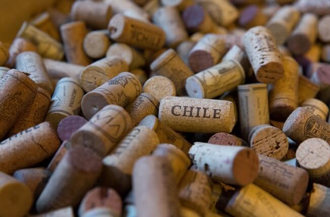 Comment: Chile Could Have The 'world At Its Feet' photo