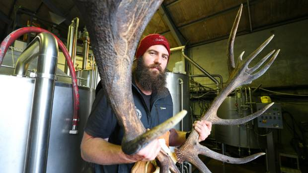 New Zealand brewery makes the world's first deer beer for the Chinese market photo