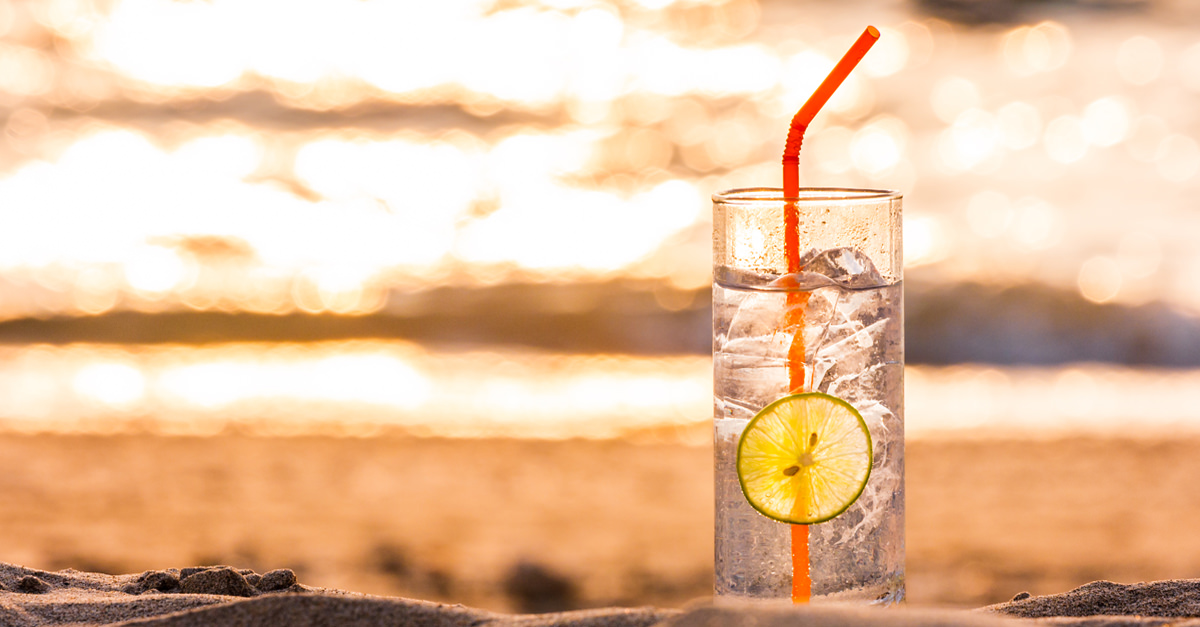 A London Bar Wants To Pay For You And Your Bestie To Travel The World, Drinking Gin photo