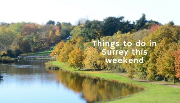 Things To Do In Surrey This Weekend photo