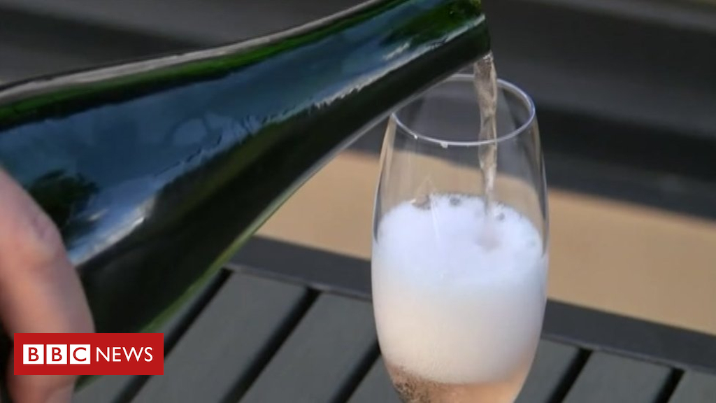 Winemaker To Create 'largest Vineyard' photo