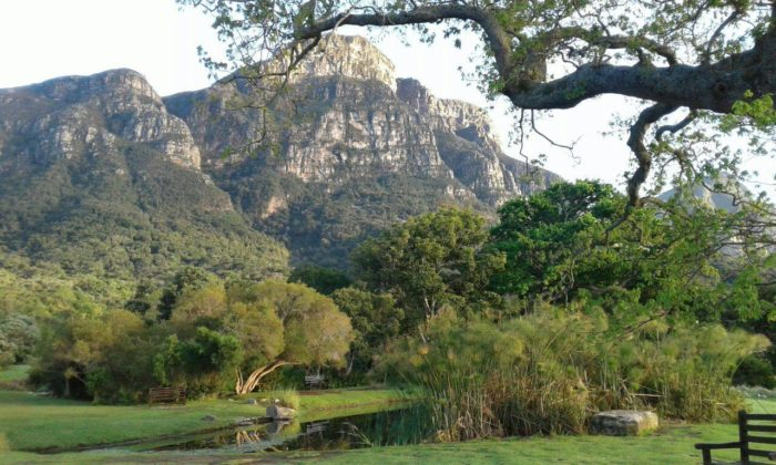Must-visit Picnic Spots In The Cape photo