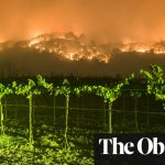 What Climate Change Means For The Wine Industry photo