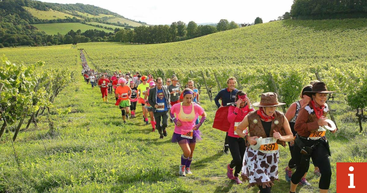 Celebrate Britain's Grape Harvest By Joining The Denbies Bacchus Festival, Which Combines Marathon Running With Wine-tasting photo