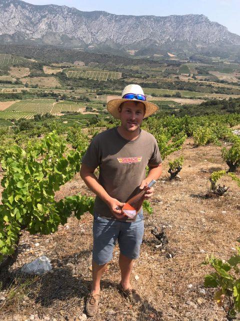 Res Fortes Winemaker Buys Domaine De L?arpege photo