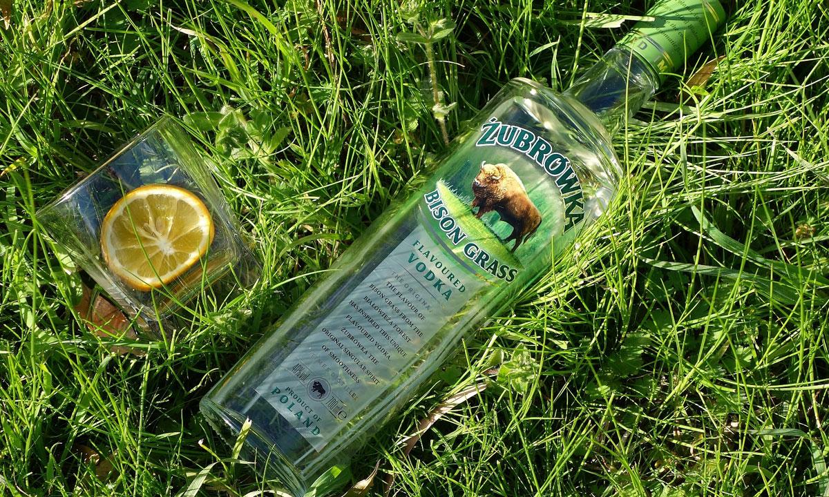 Bitter-sweet: Vodka With A Hint Of Buffalo Grass photo