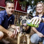 Houston Couple Launches Beer For Dogs photo